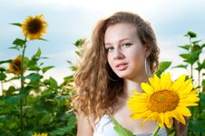 Free Beauty Woman In Sunflower Royalty Free Stock Photo - 15111875