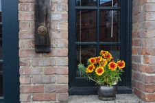 Free Flowers In A Window Stock Photo - 15114220