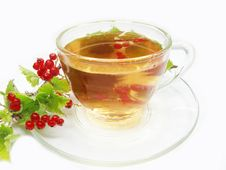 Free Herbal Tea With Red Currant Extract Stock Photo - 15114360