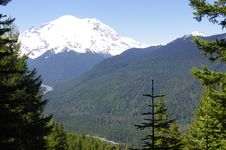 Free Mount Rainier From Crystal Lakes Trail Royalty Free Stock Photo - 15114435