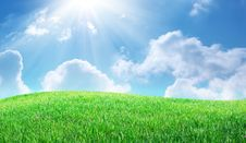 Grass And Deep Blue Sky Stock Image