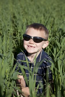 Free Boy With Sunglasses In Tall Oat Field Stock Image - 15117791