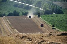 Harvest Grain 2 Royalty Free Stock Photo