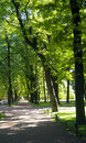 Free Sunny Park Alley. Royalty Free Stock Images - 15123489