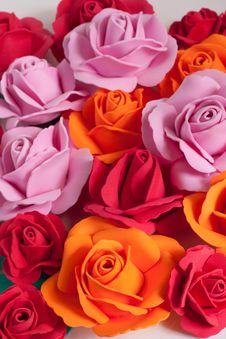 Free Color Flower Royalty Free Stock Photography - 15120047