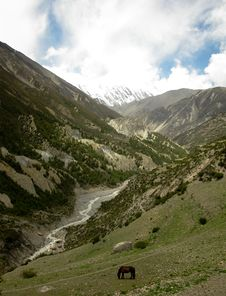 Free Nepal Stock Images - 15121834