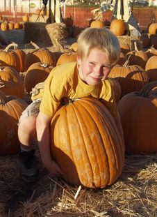 Free Boy Pumpkin Stock Photography - 15122072