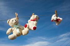 Free Teddies Hung Out To Dry Royalty Free Stock Images - 15123679