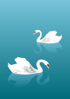 Free Swan Lake Stock Image - 15126081