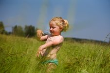 Free Little Girl Among The High Spikelets Stock Images - 15126564