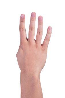 Free Man S Hand Stock Photography - 15127542