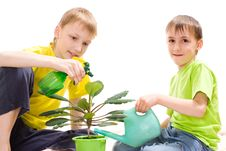 Free Boys Watering Flower Stock Image - 15129891