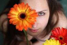 Beautiful Girls With Gerberas Royalty Free Stock Photography