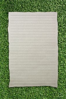 Free Tear Brown Paper With Line On Green Grass Stock Photography - 15132322