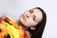 Beautiful Girls With Gerberas Stock Photography