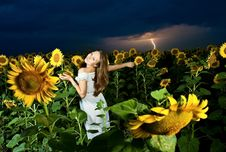 Free Woman Inside Sunflowers Field Royalty Free Stock Photos - 15134538