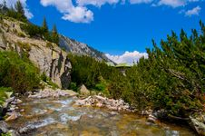 Free Mountain River Royalty Free Stock Photo - 15135445