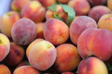 Free Peaches Royalty Free Stock Images - 15136009