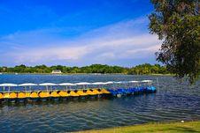 Free Peadal Boat In Lake Royalty Free Stock Photos - 15136258