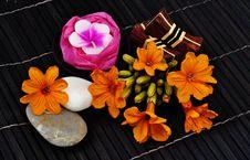 Free Tropical Spa Stock Photo - 15138330