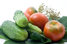 Free Tomatoes And Cucumber Stock Photo - 15138370