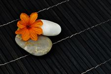 Tropical Flower With Two Round Stones Stock Images