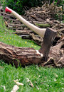 Free Lumberjack S Axe Stuck In A Tree Log On Grass Royalty Free Stock Photo - 15143725