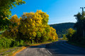 Free Road In Autumn Stock Photography - 15148552