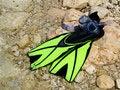 Free Snorkeling Set Royalty Free Stock Images - 15148629