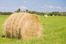 Free Haystacks Harvest Against The Skies Royalty Free Stock Photos - 15140998