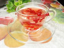 Free Fruit Tea With Red Currant Extract Stock Images - 15143004