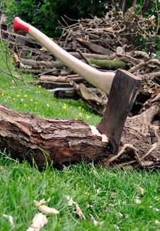 Lumberjack S Axe Stuck In A Tree Log On Grass Royalty Free Stock Photo