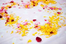 Free Wedding Blessing Stock Images - 15145934