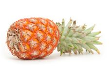 Free Pineapple Isolated On White Stock Photos - 15147013