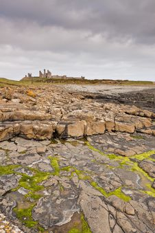 Dunstanburgh Castle And Seaweed Royalty Free Stock Images