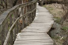 Free Boardwalk In Forest Royalty Free Stock Photos - 15148828
