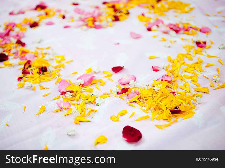 Wedding Blessing Free Stock Images Photos 15145934 Stockfreeimages Com