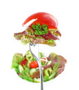 Free One Fork With Vegetable Salad And Salad In A Bowl Stock Photos - 15156393
