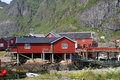 Free Fisherman S Houses On Lofoten Stock Photo - 15158270