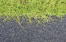 Free Garden Stone With Grass Stock Photo - 15152400