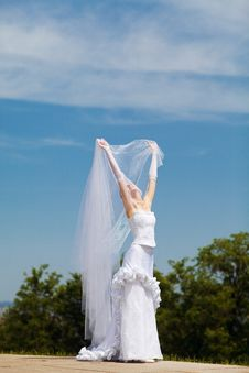 Free Bride And Veil Stock Photos - 15155583