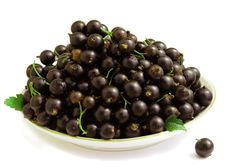 Free Black Currants On The Saucer Stock Images - 15155814