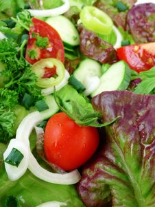 Free Vegetable Salad In Detail Stock Photography - 15156422