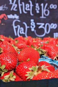 Free Baskets Of Ripe Strawberries Royalty Free Stock Photos - 15161968