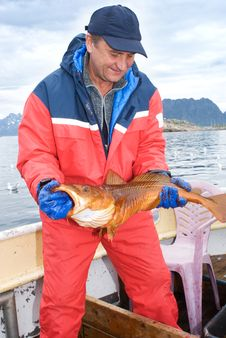 Free Fisherman With Big Fish Stock Photography - 15161992