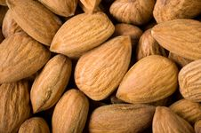 Free Almonds Background Royalty Free Stock Photography - 15162347