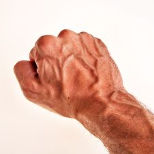 Free White Male Right Hand, Fist. Stock Images - 15163544
