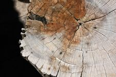 Free Texture Of Wood Royalty Free Stock Photo - 15164375