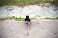 Free Boy Climbing Up At The Beach Stock Photography - 15164692