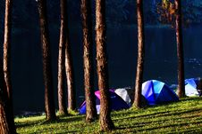 Free Camping Royalty Free Stock Photos - 15165288